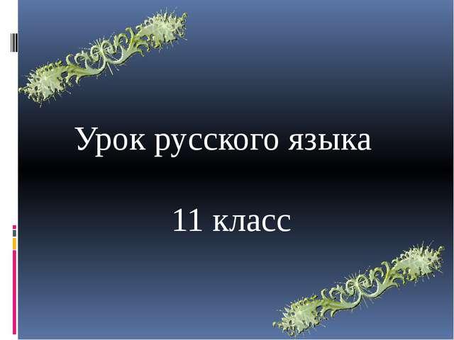 Урок русского языка 11 класс