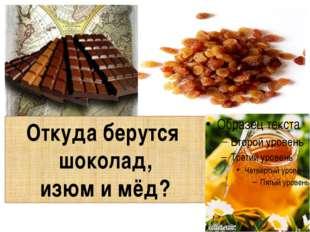Откуда берутся шоколад, изюм и мёд?