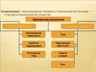 Антропогенез – происхождение человека и становление его как вида в процессе ф