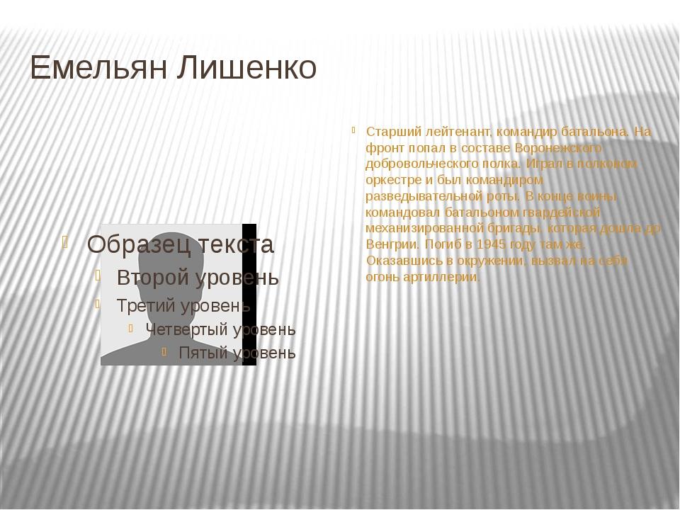 Емельян Лишенко Старший лейтенант, командир батальона. На фронт попал в соста...