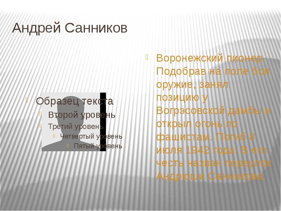 Андрей Санников Воронежский пионер. Подобрав на поле боя оружие, занял позици...