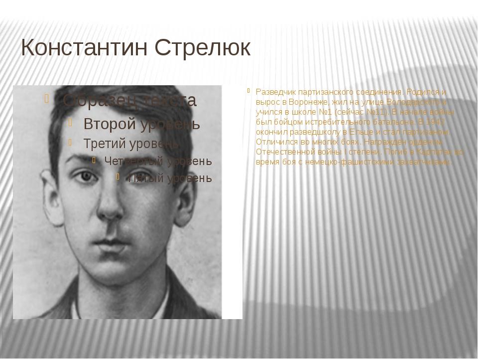 Константин Стрелюк Разведчик партизанского соединения. Родился и вырос в Воро...