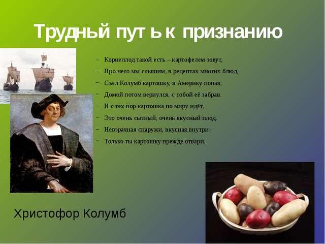 Трудный путь к признанию Корнеплод такой есть – картофелем зовут, Про него мы...