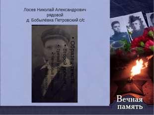 Лосев Николай Александрович рядовой д. Бобылёвка Петровский с/с