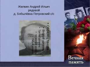 Жилкин Андрей Ильич рядовой д. Бобылёвка Петровский с/с