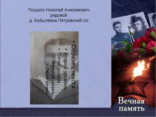 Пошало Николай Анисимович рядовой д. Бобылёвка Петровский с/с