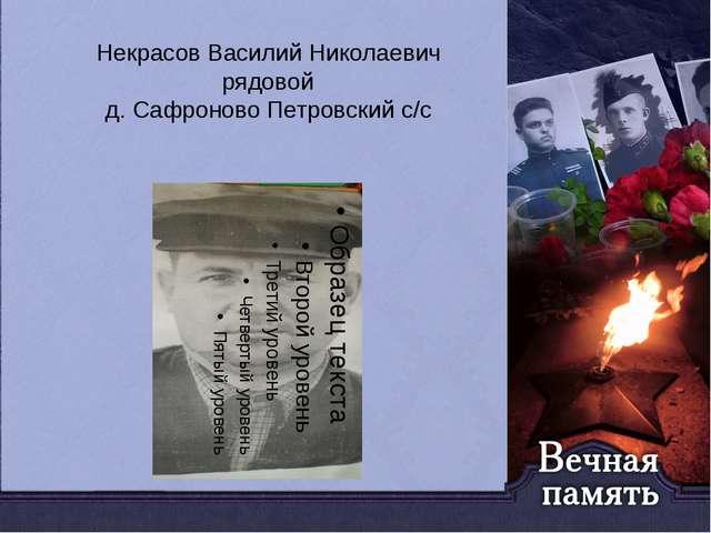 Некрасов Василий Николаевич рядовой д. Сафроново Петровский с/с