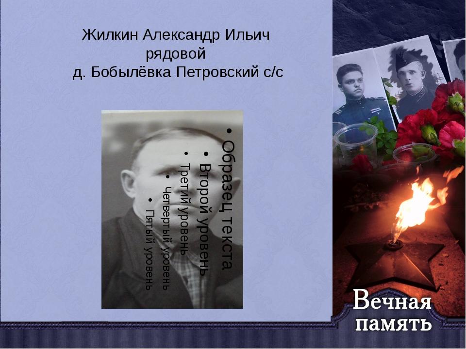 Жилкин Александр Ильич рядовой д. Бобылёвка Петровский с/с