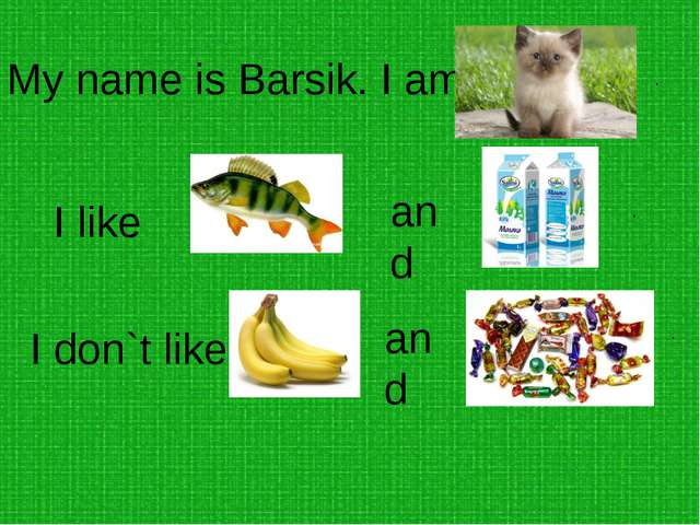 My name is Barsik. I am a I like and . . I don`t like and .