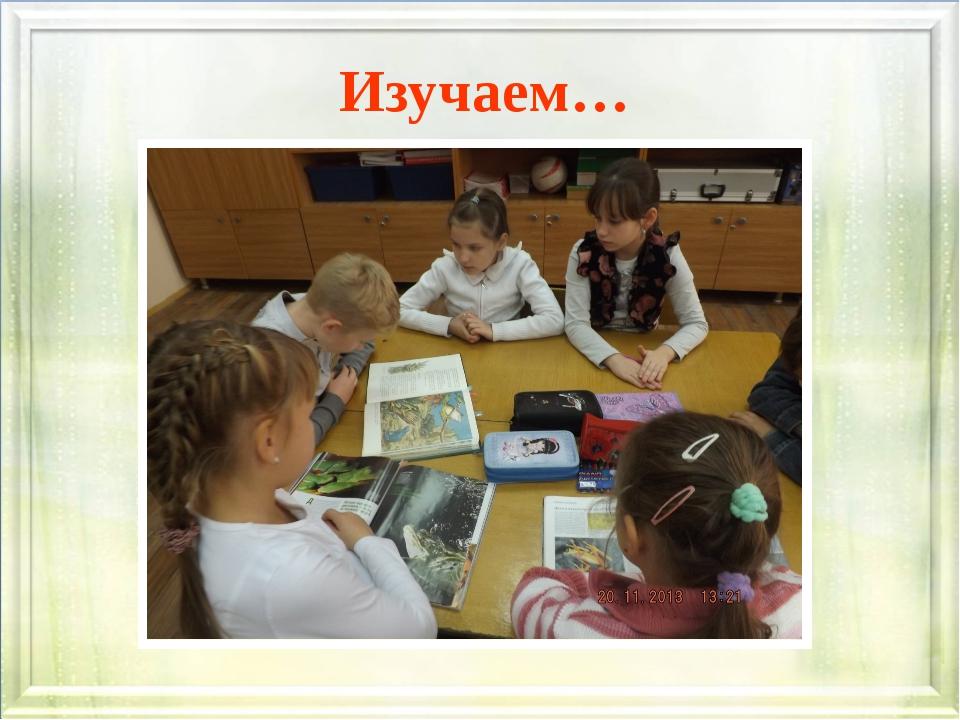 Изучаем…