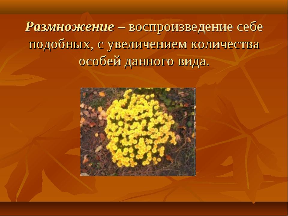 Размножение – воспроизведение себе подобных, с увеличением количества особей...