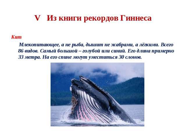 V Из книги рекордов Гиннеса Кит Млекопитающее, а не рыба, дышит не жабрами, а...