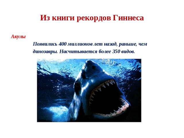 Из книги рекордов Гиннеса Акулы Появились 400 миллионов лет назад, раньше, че...