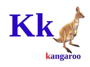 Kk kangaroo