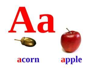 Aa apple acorn