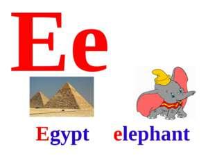Ee elephant Egypt