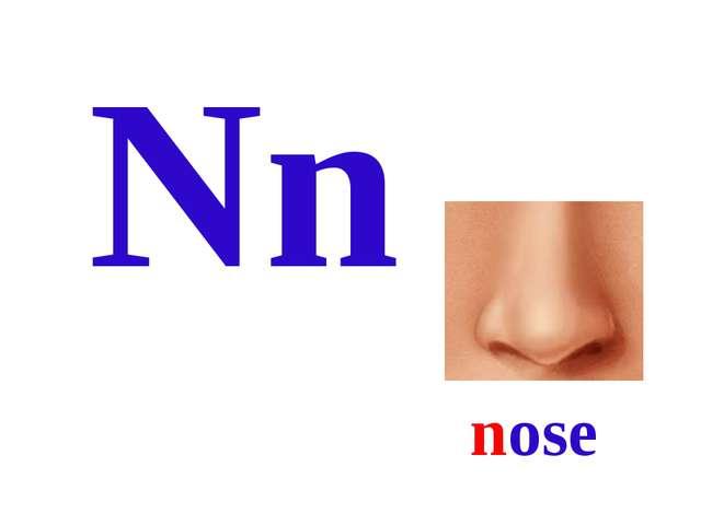 Nn nose