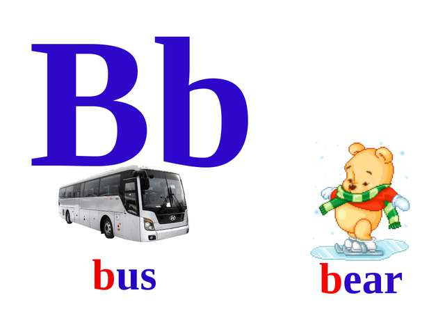Bb bear bus