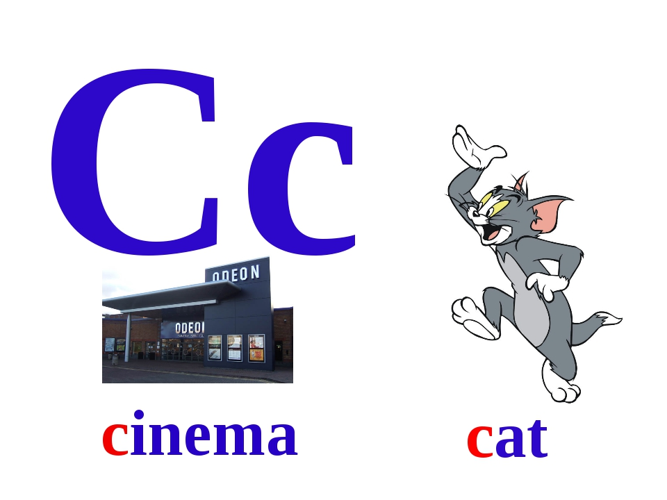 Cc cat cinema