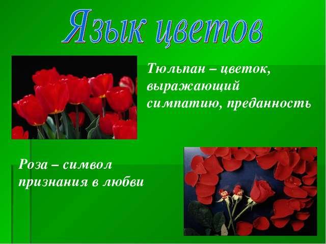 Тюльпан – цветок, выражающий симпатию, преданность Роза – символ признания в...