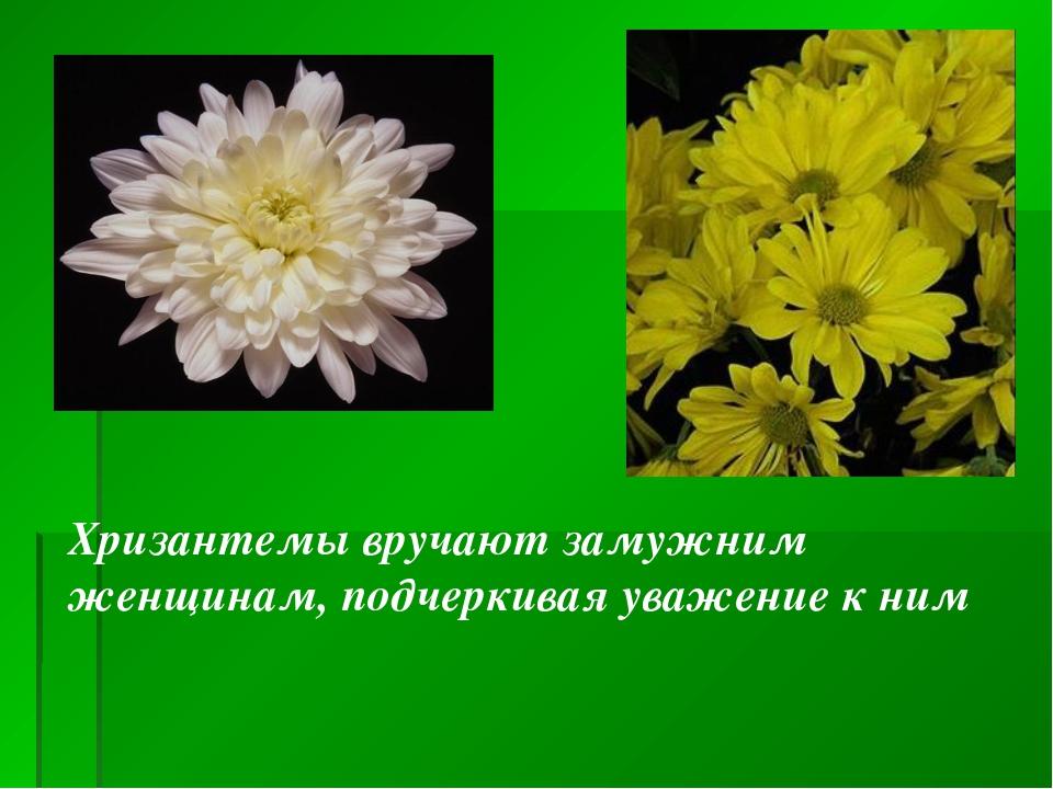 Хризантемы вручают замужним женщинам, подчеркивая уважение к ним