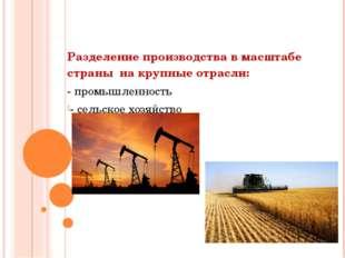 Разделение производства в масштабе страны на крупные отрасли: - промышленнос