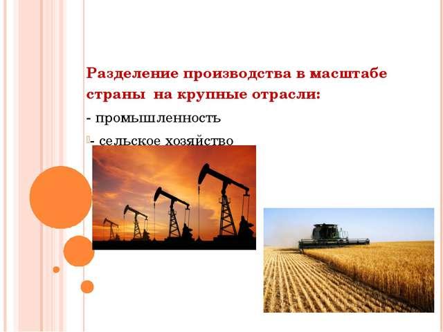 Разделение производства в масштабе страны на крупные отрасли: - промышленнос...