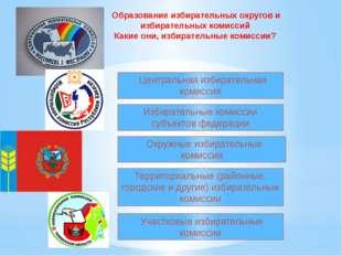 Образование избирательных округов и избирательных комиссий Какие они, избира