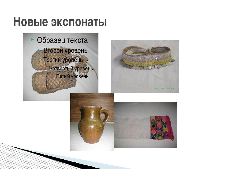 Новые экспонаты