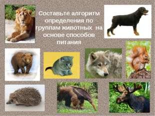 Составьте алгоритм определения по группам животных на основе способов питания