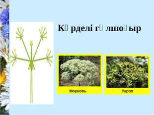 Морковь Укроп Күрделі гүлшоғыр