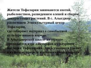 Жители Тофаларии занимаются охотой, рыболовством, разведением оленей и сбором