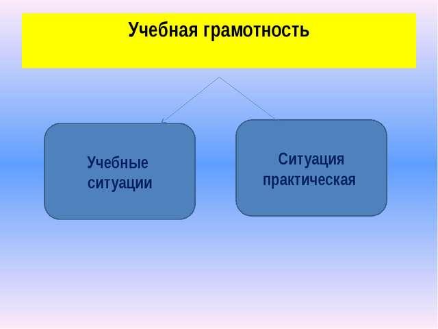Учебная грамотность Учебные ситуации Ситуация практическая