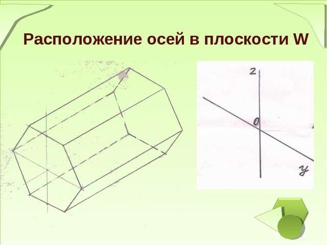 Расположение осей в плоскости W