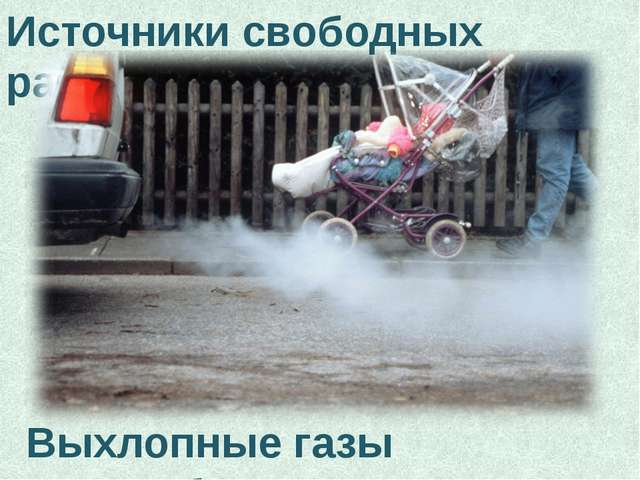 Источники свободных радикалов Выхлопные газы автомобиля