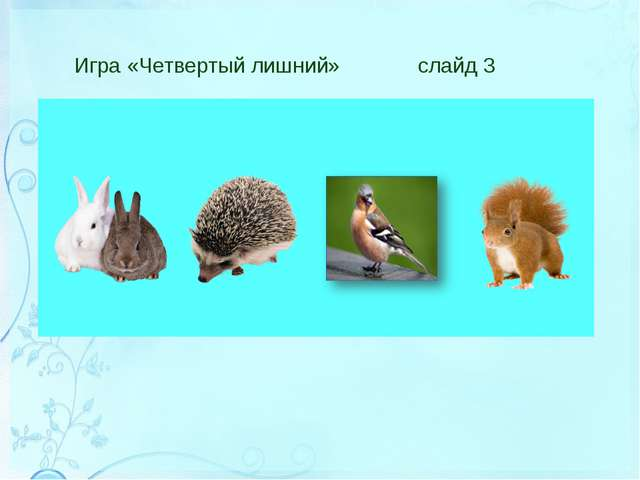 Игра «Четвертый лишний» слайд 3