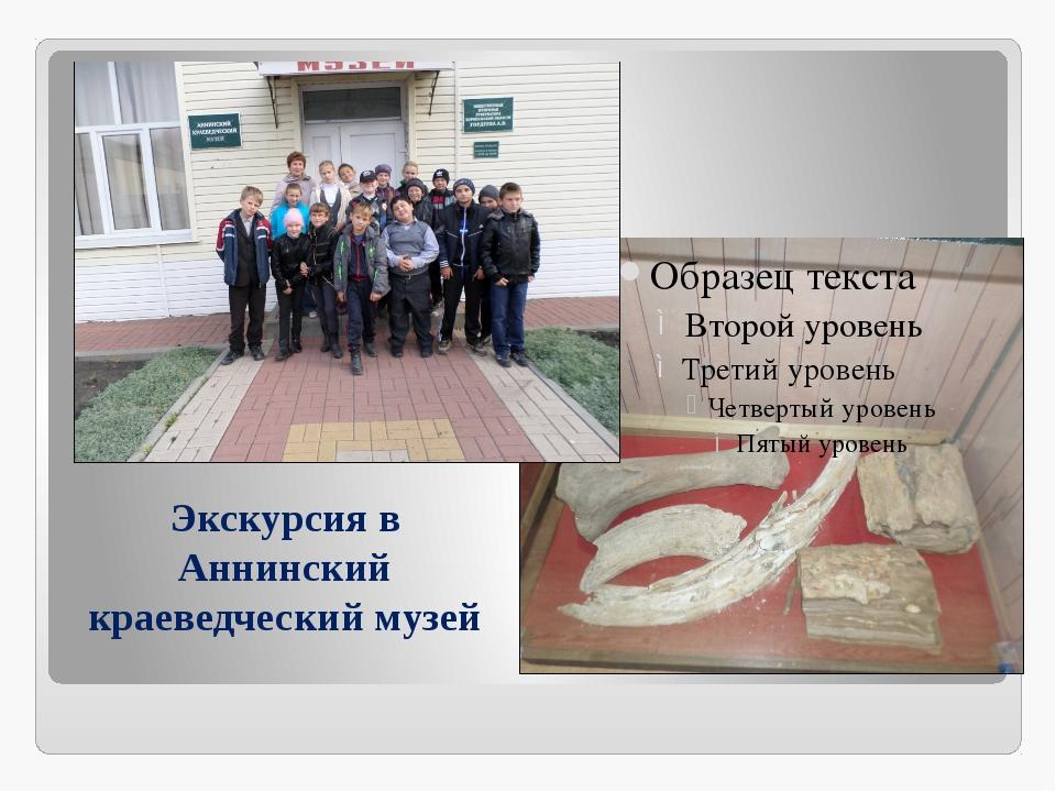 Экскурсия в Аннинский краеведческий музей