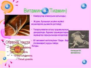 Витамин (Тиамин) Көмірсулар алмасуына қатысады; Жүрек, бұлшықет,жүйке жүйесі