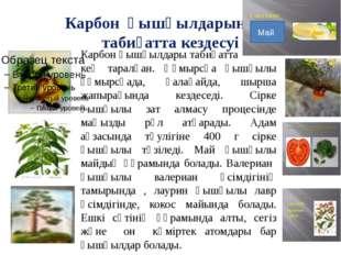 Карбон қышқылдарының табиғатта кездесуі Карбон қышқылдары табиғатта кең тарал