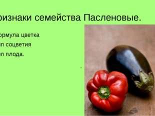 Признаки семейства Пасленовые. Формула цветка Тип соцветия Тип плода. П_м___р