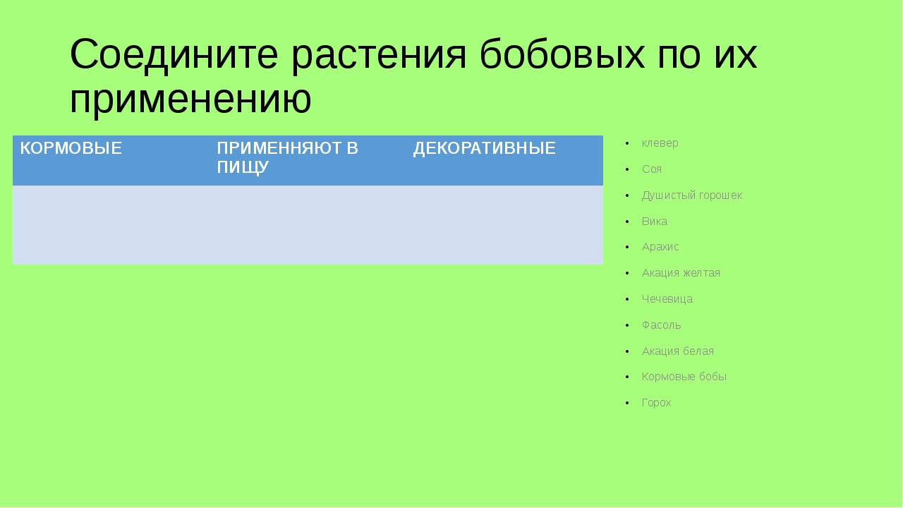 Соедините растения бобовых по их применению клевер Соя Душистый горошек Вика...