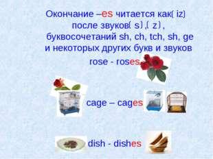 Окончание –es читается как iz после звуков s , z , буквосочетаний sh, ch, tc