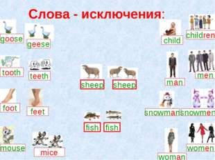 Слова - исключения: goose feet foot mice mouse child children man men snowman