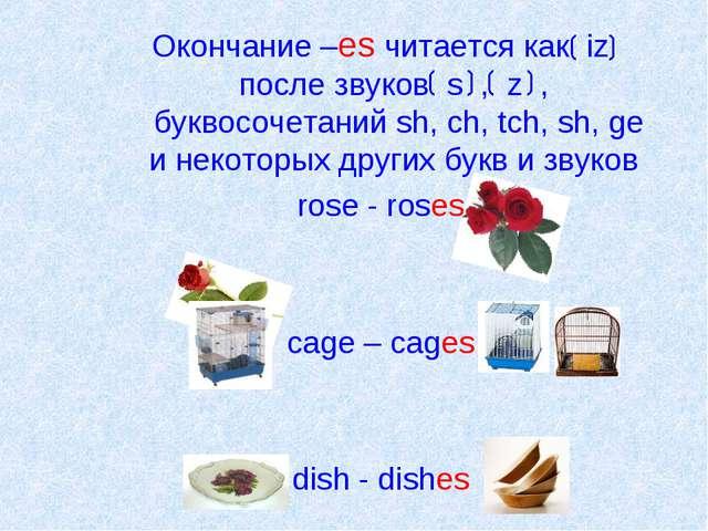 Окончание –es читается как iz после звуков s , z , буквосочетаний sh, ch, tc...