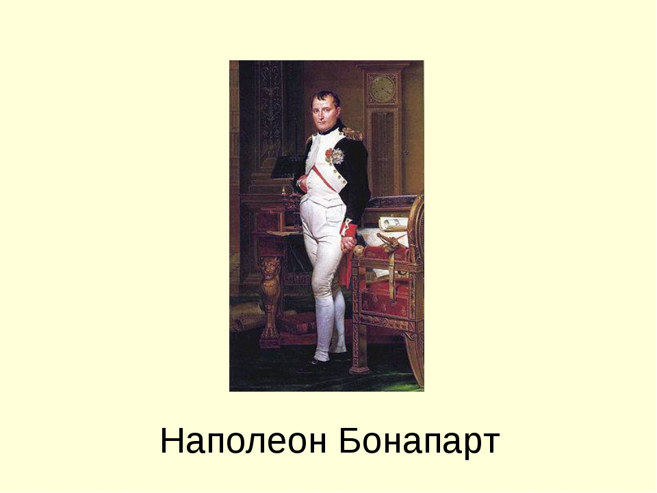 a biography of the life and radicalism of napoleon bonaparte It used to be there that josephine first stuck the attention of napoleon bonaparte a real companion to napoleon, she was once equivalent components political adviser, hostess par excellence, confidante, and passionate lover during this desirable biography, stuart brings her so totally to existence that we eventually comprehend why napoleon's.