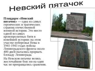 Плацдарм «Невский пятачок»— одна из самых героических и трагических страниц