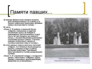 Памяти павших… 10 января фашистские изверги вывели всех военнопленных за стан