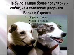 ... Не было в мире более популярных собак, чем советские дворняги Белка и Ст