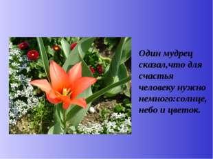 Один мудрец сказал,что для счастья человеку нужно немного:солнце,небо и цвет