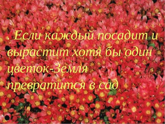 . Если каждый посадит и вырастит хотя бы один цветок-Земля превратится в сад...